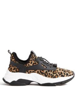 myles leopard